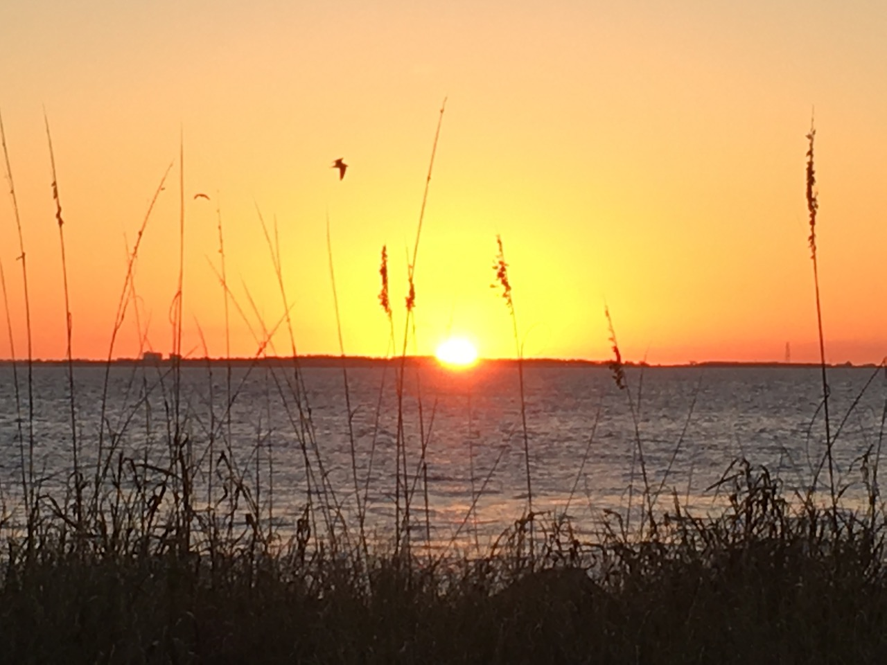 Sunrise on Dauphin Island