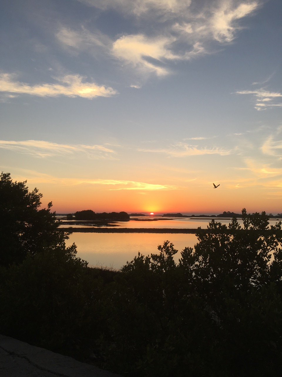 One last Cedar Key sunrise